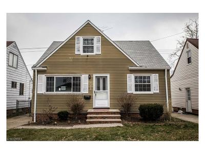 Wickliffe Single Family Home For Sale: 30029 Regent Rd