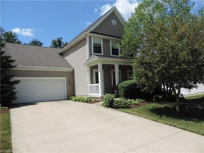 Brecksville, Broadview Heights Single Family Home For Sale: 2842 Boxwood Ct