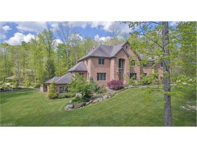 Hiram Single Family Home For Sale: 12805 Greystone Dr