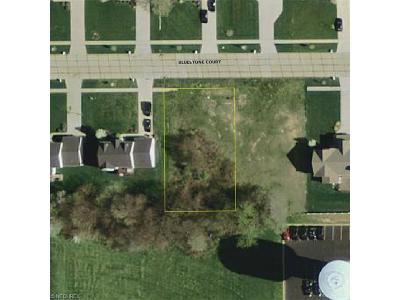 Wadsworth OH Residential Lots & Land For Sale: $43,500