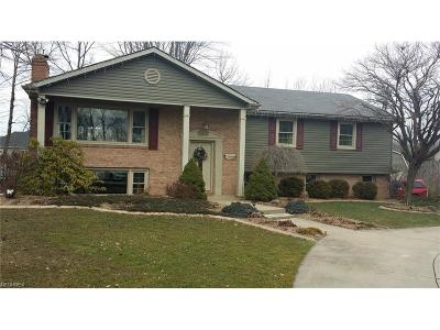 Boardman Single Family Home For Sale: 712 McClurg Rd