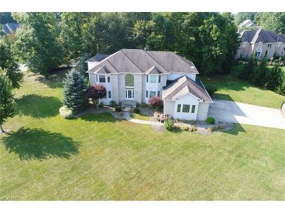 Poland Single Family Home For Sale: 8526 Twin Oaks Ct