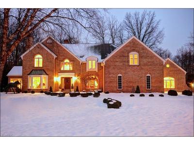 Avon Lake Single Family Home For Sale: 32381 Nottingham Dr