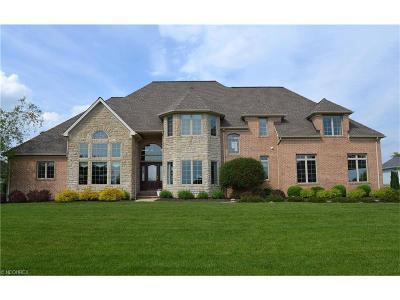 Medina Single Family Home For Sale: 6467 Aberdeen Ln