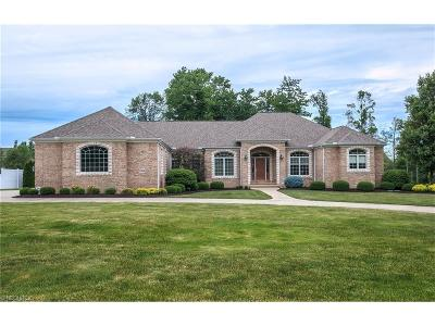 Concord Single Family Home For Sale: 7984 Augusta Ln