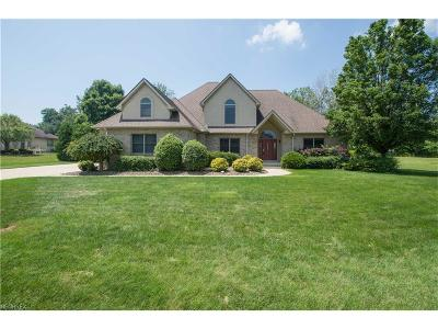 Youngstown Single Family Home For Sale: 1326 Meadowood Cir