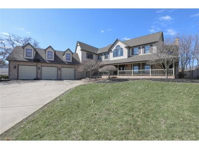 Boardman Single Family Home For Sale: 6636 Bristlewood Dr