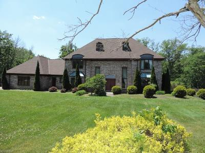Brecksville, Broadview Heights Single Family Home For Sale: 10400 Barr Rd