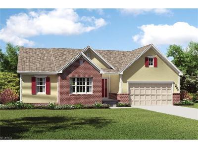 Marietta Single Family Home For Sale: 100 Glen Eagle Dr