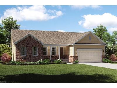Marietta Single Family Home For Sale: 105 Glen Eagle Dr