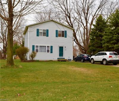 Painesville Township Single Family Home For Sale: 119 Lakeview Blvd