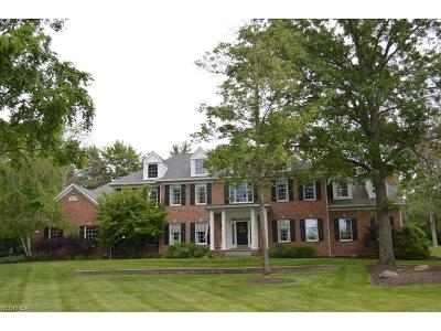 Summit County Single Family Home For Sale: 6333 Hardwick Way
