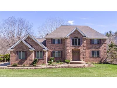 Chesterland Single Family Home For Sale: 12971 Sperry Rd
