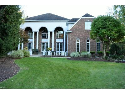 Cuyahoga County Single Family Home For Sale: 5563 Woodmill Cir