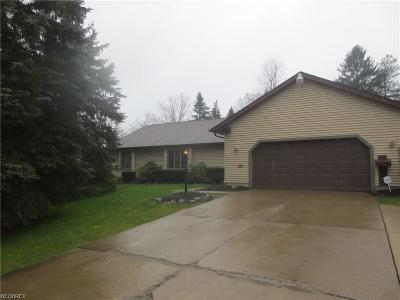 Youngstown Single Family Home For Sale: 124 Haviland Dr