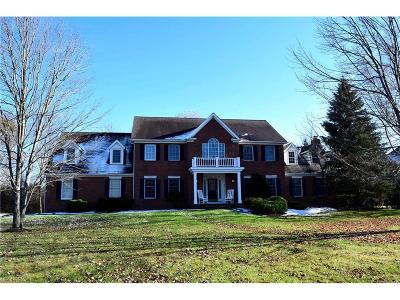 Chagrin Falls Single Family Home For Sale: 314 Fox Way
