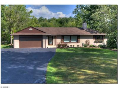 Geauga County Single Family Home For Sale: 7518 Fairmount Rd