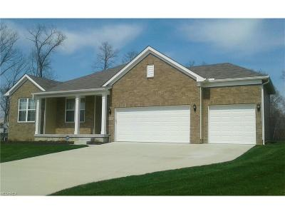 Strongsville Single Family Home For Sale: 20518 North Greystone Dr
