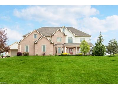 Valley City Single Family Home For Sale: 5485 Winter Brook Dr
