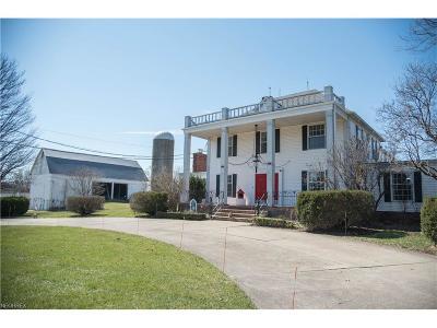 Medina OH Single Family Home For Sale: $529,900