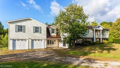 Ashtabula County Single Family Home For Sale: 2462 State Route 307
