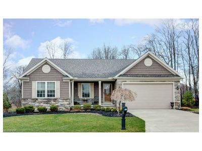 Mentor Single Family Home For Sale: 5541 Saw Grass Ct