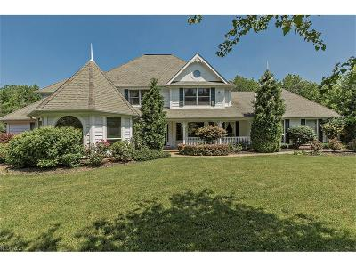 Concord Single Family Home For Sale: 9937 Little Mountain Rd