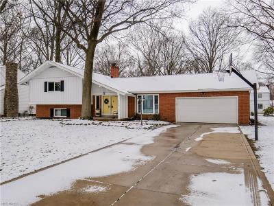 Fairview Park Single Family Home For Sale: 4590 Concord Dr
