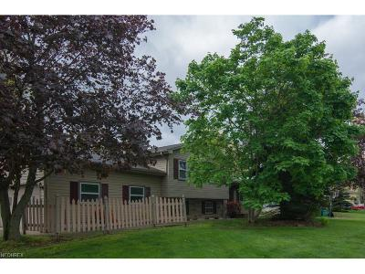 Hubbard Single Family Home For Sale: 603 Meadowland Dr