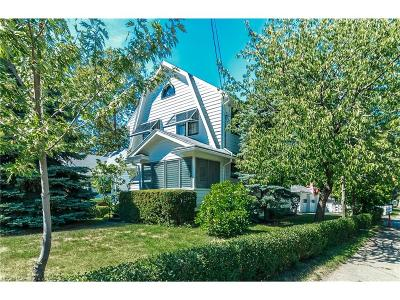 Fairport Harbor Single Family Home For Sale: 443 New St