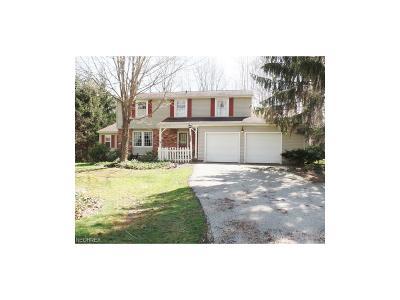 Chardon Single Family Home For Sale: 11055 Sunshine Dr