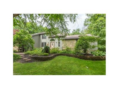 Concord Single Family Home For Sale: 8260 Hermitage Rd