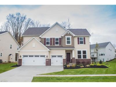 Twinsburg Single Family Home For Sale: 9439 Grace Dr