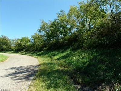 Morgan County Residential Lots & Land For Sale: 4112 Rainey Hill Rd