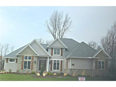Westlake Single Family Home For Sale: 29268 Graystone Dr