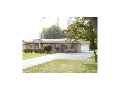 Canfield Single Family Home For Sale: 7157 North Palmyra Rd