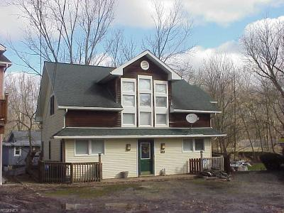 Chippewa Lake Single Family Home For Sale: 118 Shady Slope