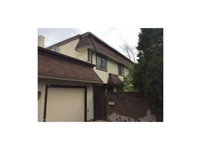 Concord Condo/Townhouse For Sale: 9956 Johnnycake Ridge Rd #B11