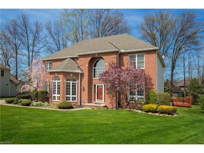 Westlake Single Family Home For Sale: 3716 Greenbriar Cir