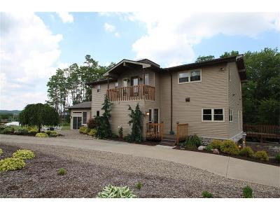 Medina Single Family Home For Sale: 6940 Boneta Rd