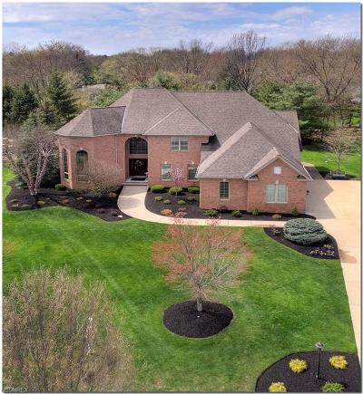 Brecksville Single Family Home For Sale: 4531 Hunting Valley Ln