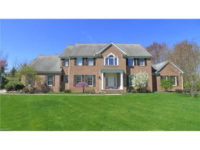 Chagrin Falls Single Family Home For Sale: 304 Fox Way