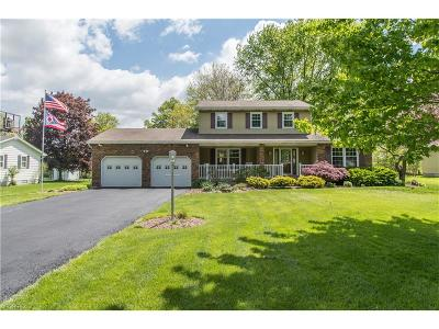 Canfield Single Family Home For Sale: 6781 Summit Dr