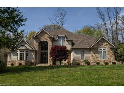 Chagrin Falls Single Family Home For Sale: 7570 Trails End