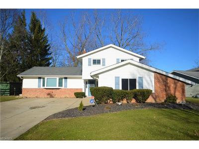 Solon OH Single Family Home For Sale: $288,000