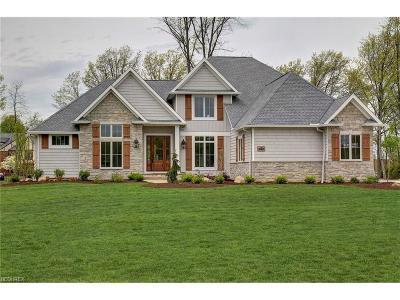 Westlake Single Family Home For Sale: 1776 Granite Ct