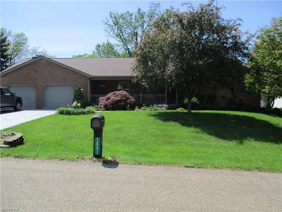 Muskingum County, Morgan County, Perry County, Guernsey County Single Family Home For Sale: 3841 Litho Ln