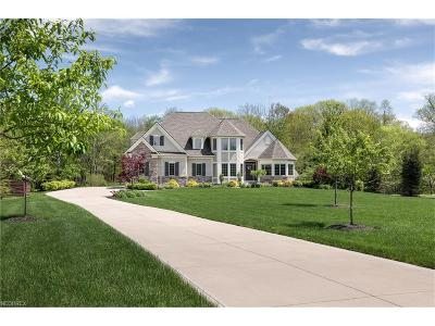 Lake County Single Family Home For Sale: 10777 Tibbetts Rd