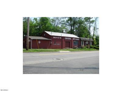 Guernsey County Commercial For Sale: 1203 Morton Ave