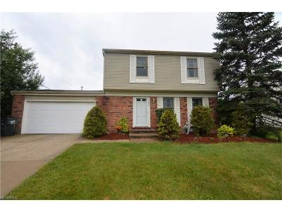 Bedford Heights Single Family Home For Sale: 6740 Deer Ct